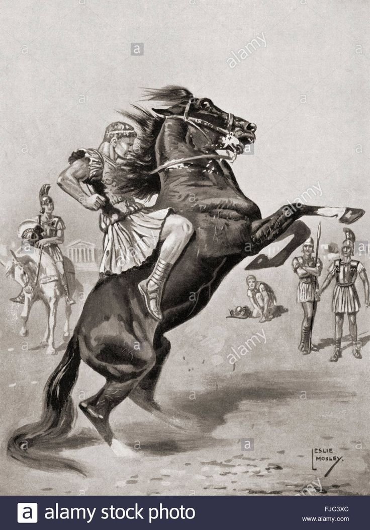 alexander the great and the battle Alexander the great attacked the bordering states of india in 326 bc he had a  decisive battle with the indian king purushottam (called porus in greek texts,.