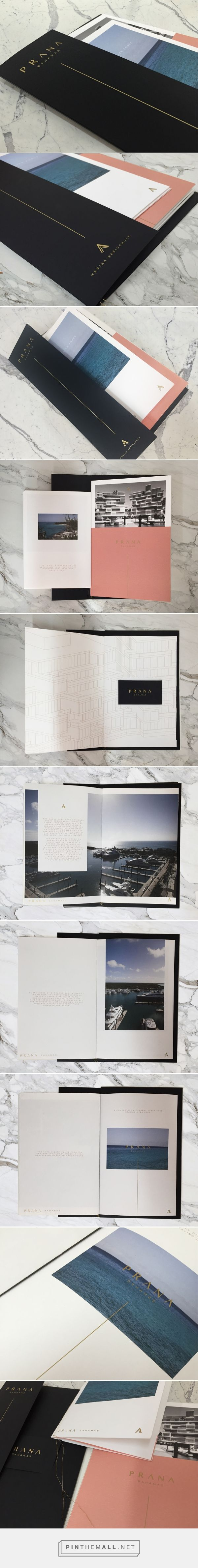 PRANA Building: Branding & Brochure on Behance... - a grouped images picture…