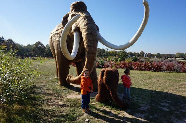 kreatywnyMaks: Gigantyczne owady i prahistoryczne zwierzęta