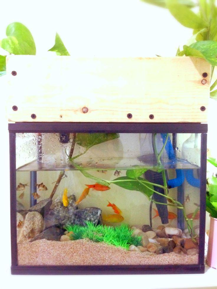 Pallet aquarium canopy