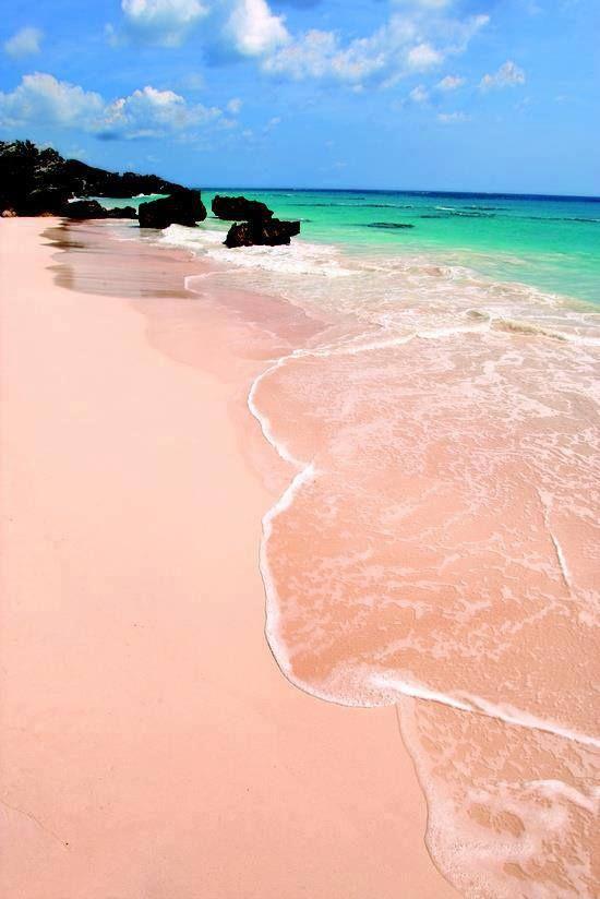 Pink beach, #Bermuda