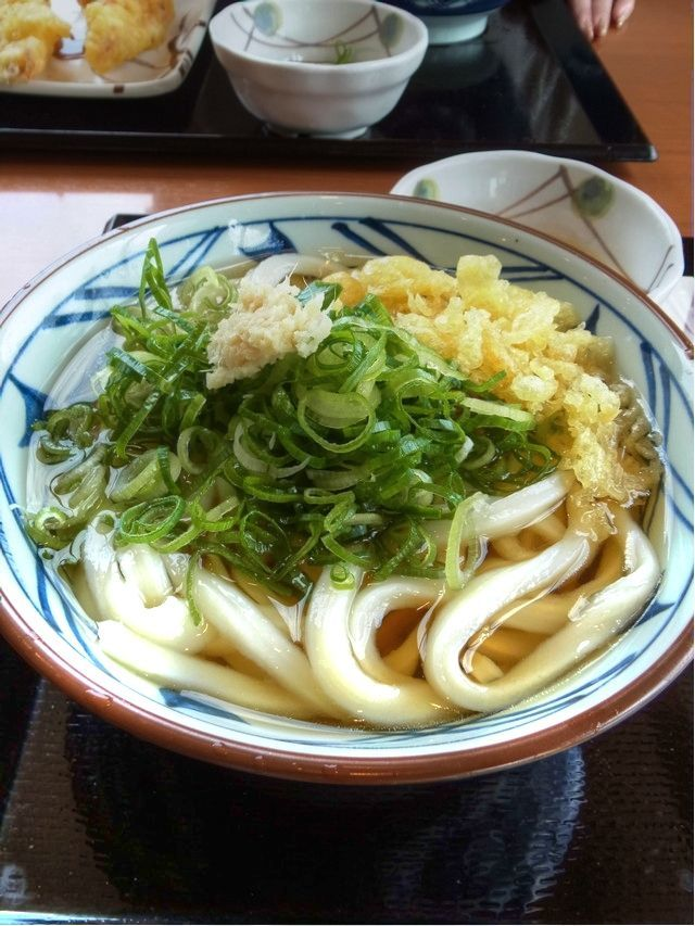 Japanese food udon