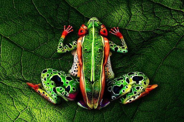 Fantastische Bodypaint Arbeiten von Johannes Stöter der seine Subjekte nicht nur in die Umgebung einfließen lässt, sondern zudem nochLebewesenerschafft, wie zum Beispiel oben auf dem Bild. Sieht man erst einmal über die Illusion hinweg, erkennt man, dass es sich hierbei nicht um einen Frosch sondern um gleich fünf (!) Menschen handelt. Der Clip gibt Aufschluß darüber, wie die Körper angeordnet... Weiterlesen