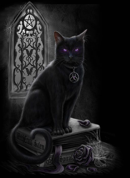 Witches Black Cat by Sheblackdragon.deviantart.com on @deviantART