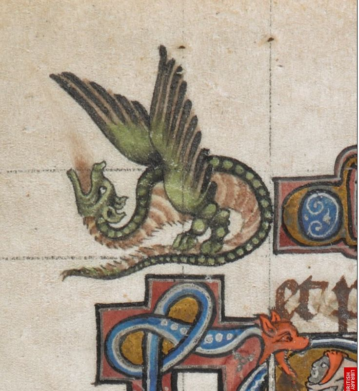 Medieval Border Dragon, Add MS 24686 c 1284-1316, Psalter, known as 'The…