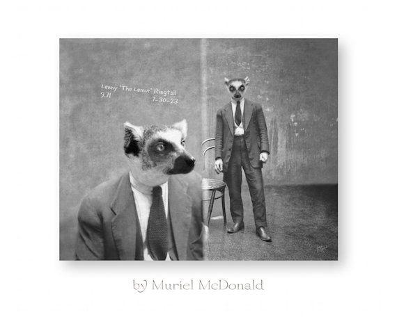 Animal Art Print Lemur Animals In Clothes Anthropomorphic