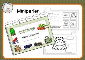 Miniperlen: Amphibien