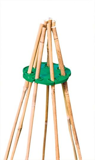 7 Wigwams without ties  This simple piece of plastic was recommended to me by an elderly neighbour as an easy way to make a wigwam for sweet peas. You just push the bamboo canes into the slots rather than having to tie them together