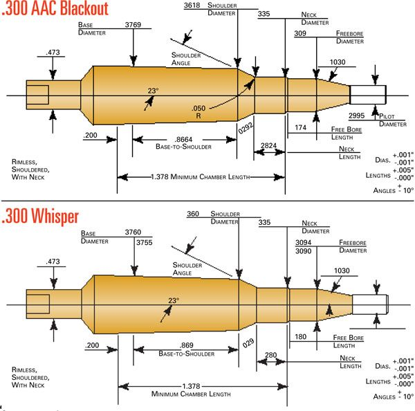 Shades of Gray: .300 Whisper & .300 AAC Blackout
