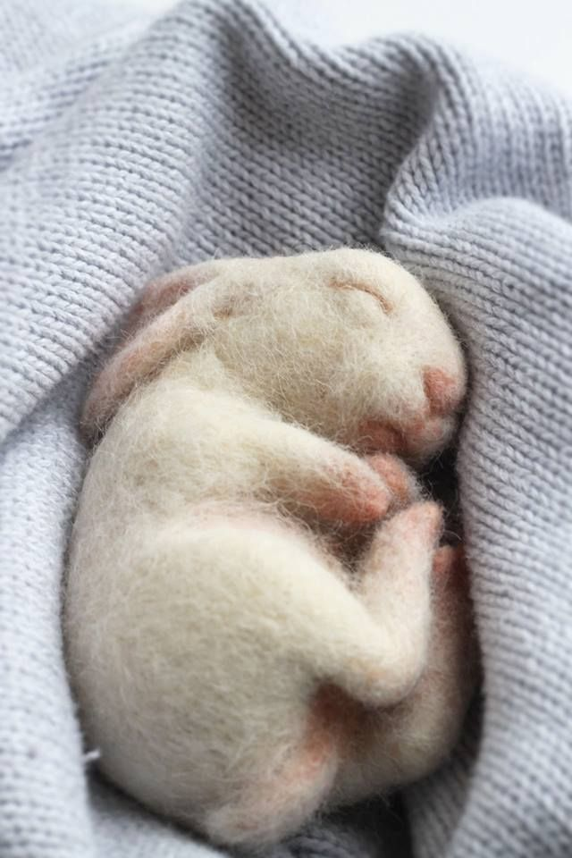 needle felted baby rabbit by Yvonne's Workshop