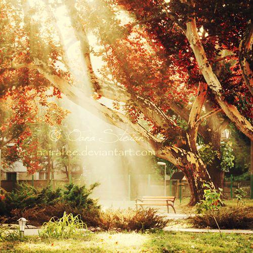 Light by *nairafee on deviantART