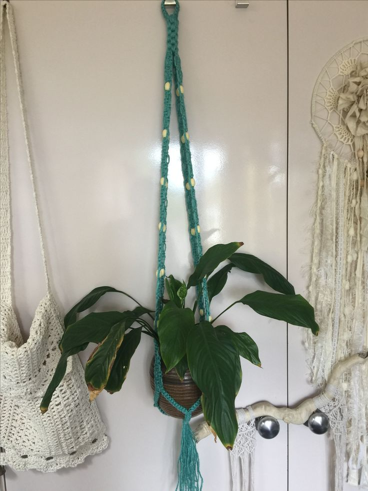 Boho macrame Plant Hanger  Instagram mrs_ma_ching  Bohemian Rooms decorations