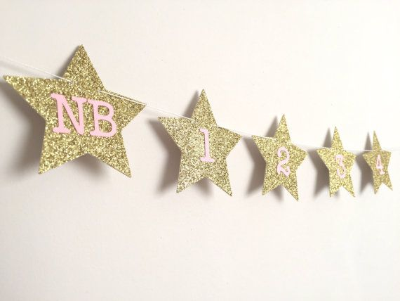Pink and Gold First Year Monthly Photo Banner - Newborn to 12 months / Twinkle Twinkle Little Star Party / Baby's First Birthday