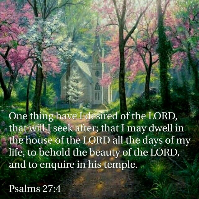 Psalm 27:4-I will seek to dwell in the house of the Lord, to behold His beauty, to enquire in His temple! (I Will in Psalms)