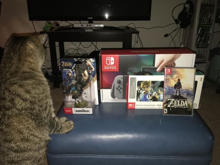 Got the last Nintendo Switch in the store by sheer luck my cat seems as excited as I am.