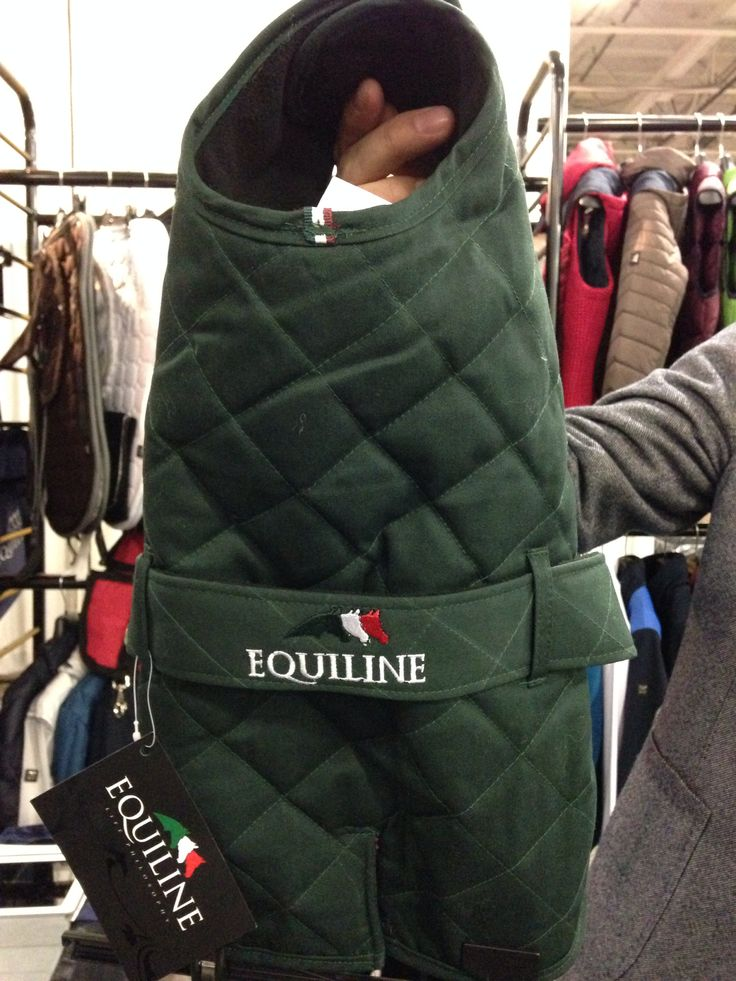 EQUILINE dog trench coat!