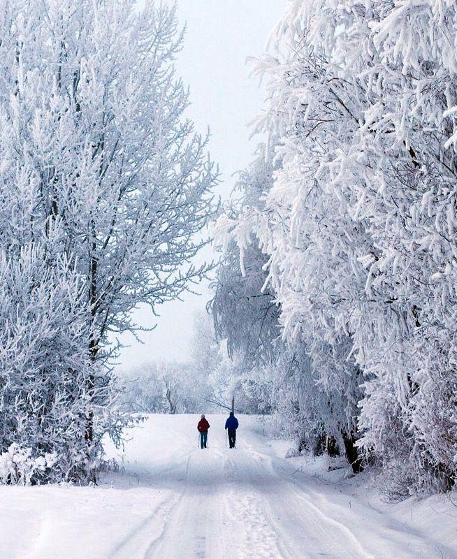 Winter Walk (Ostergotland, Sweden) by Johan Klovsjö❄️
