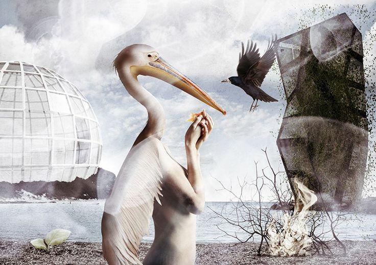 #Ideazione e progettazione #grafica #fotografica #Fabio Roncaglia #www.studioroncaglia.com