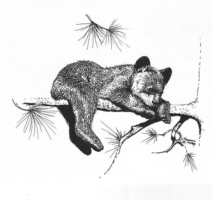 Little Black Bear Cub Drawing