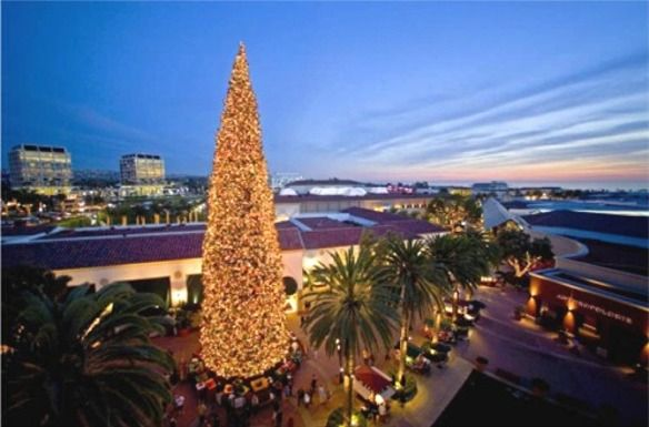 Image Result For Christmas Orange County Holiday Lights Display Holiday Lights Christmas Tree Lighting