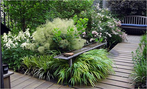 patio-with-plants3.  Note contrasts:  spiky leaves, feathery spikes, little flowers, large flowers, shapes and heights:  all unified with a green & white colour palette