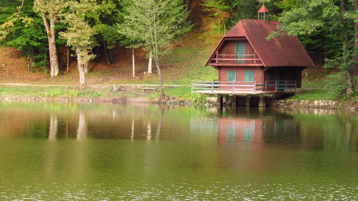 lake_cottage_by_shokisan-d4cwjrw
