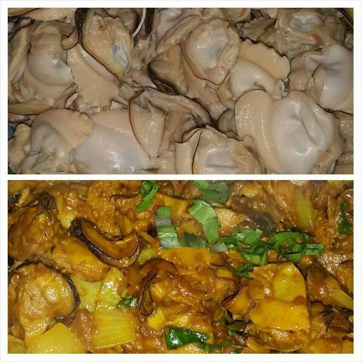 Curry kai