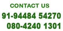 Contact @ 94484 54270, 80 4240 1301 for Pest Control Bangalore