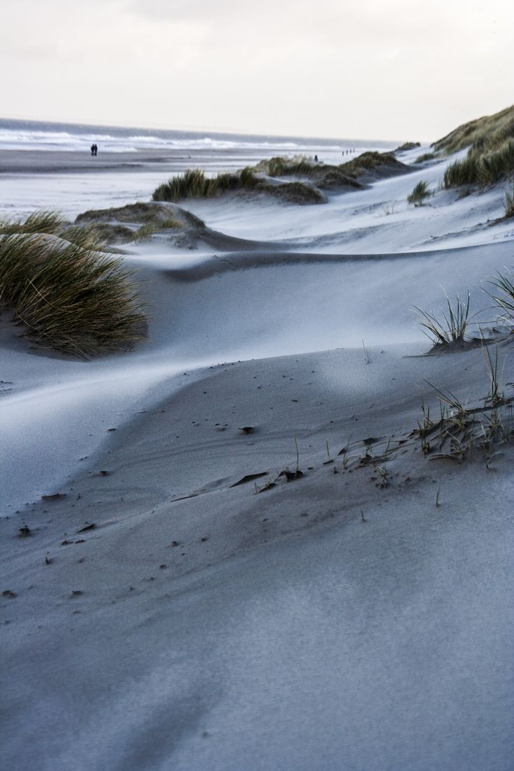 Sand dunes and beach on Vlieland, the Netherlands. Picture made by Bart Lebesque