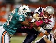 Yep we took the dolphins down too!!Football Helmets, Miami Dolphins, Dolphins Diet, England Patriots