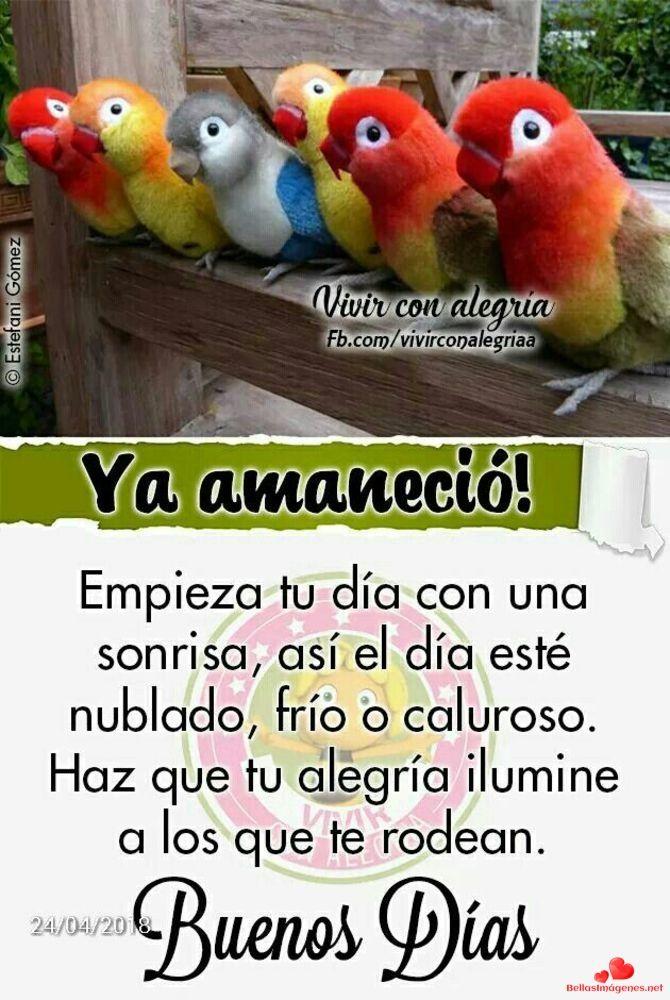 Buenos Dias Imagenes Nuevas 86 Whatsapp Buenos Día Good Morning