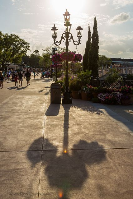 Hidden Mickey only appears at a certain time of day.