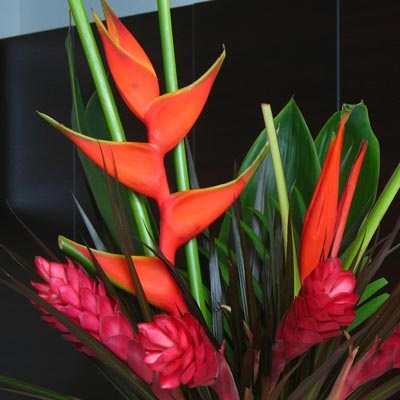 2nd picture of possible centerpiece for receptions.  Great price at $229.99 for 20 bouquets & have 5 variations in Tropical Wedding Centerpieces on Costco's website for floral.