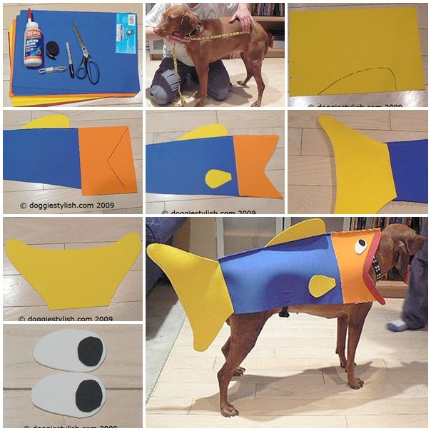 how to make Fish Halloween costume for dog step by step DIY tutorial instructions, How to, how to make, step by step, picture tutorials, diy instructions, craft, do it yourself