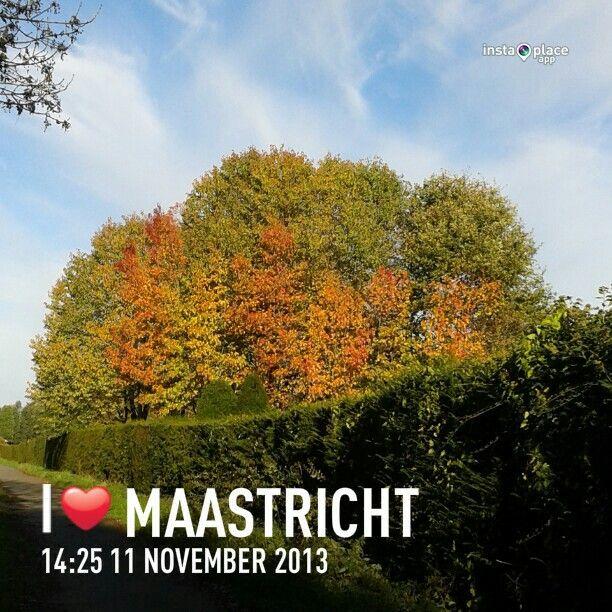 Mooie herfstkleuren in november