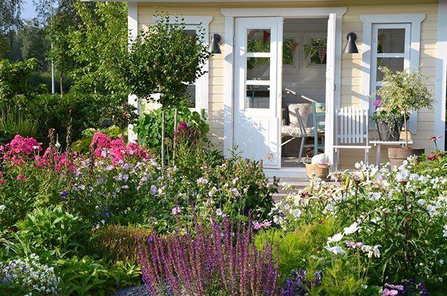 Hyvää huomenta!☀️Good morning! #kesäaamut #kesähuone #summermornings #cottagegarden #uterum #garden #mygarden #trädgård