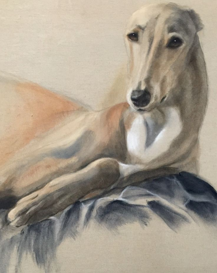 """Gala"",the queen Acrylic on canvas ,natural size  painted by lucillabollati.com #greyhounds#art#dogs"