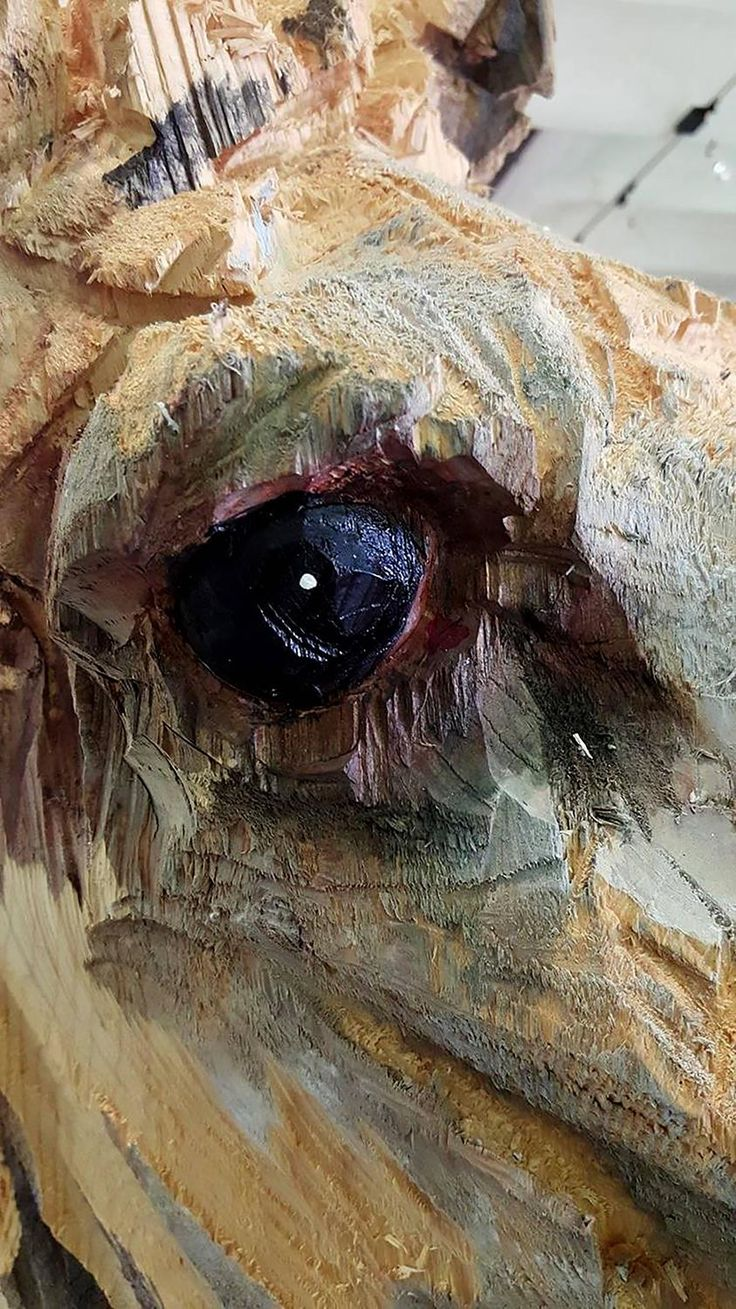 Best images about tree carving on pinterest ocean