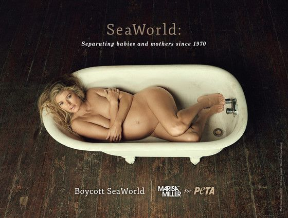 Pregnant Marisa Miller Poses Nude for PETA, Urges Fans to Boycott SeaWorld  Marissa Miller