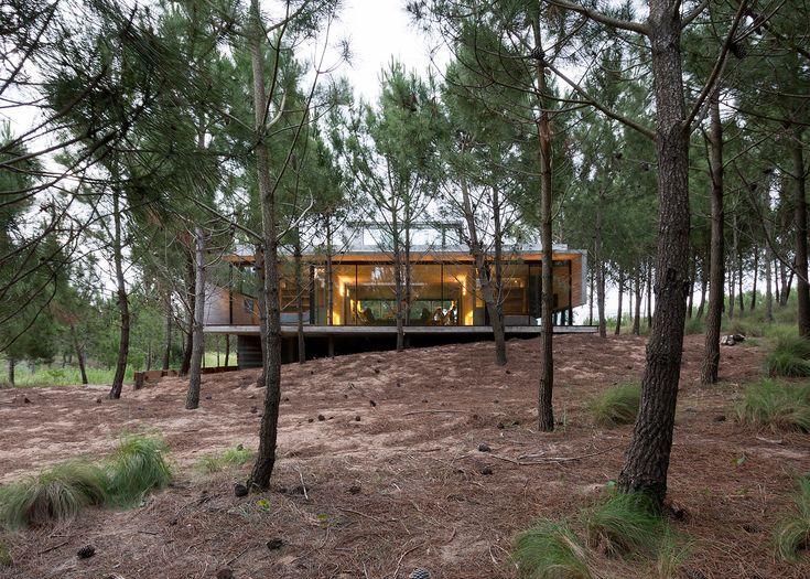 Droomhuis in het bos