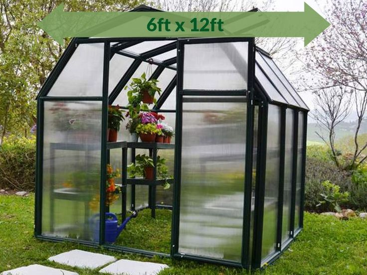 Rion 6ft x 12ft EcoGrow 2 TwinWall Greenhouse HG7012
