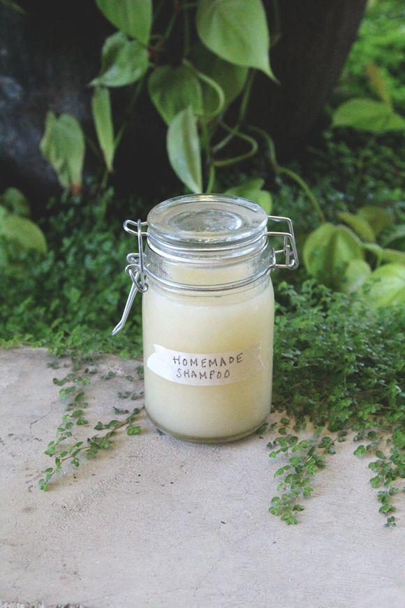 homemade shampoo: 4 ounces brewed dandelion root tea (or green tea), 4 ounces castile soap, 1 tablespoon coconut oil