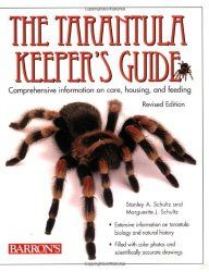 Looking for a pet tarantula? Perfect, at tarantulapets we seek to provide you with what we feel is the best information out there from care to choosing your tarantula.