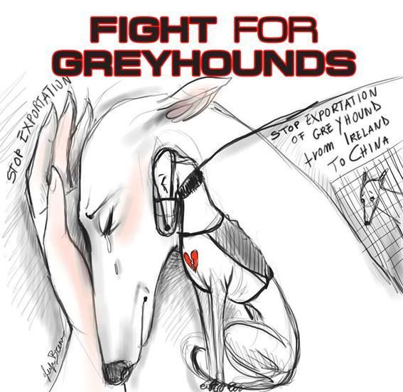 Justice for Greyhounds | Uplift Ik I put with jokes but its not one! Please help by spreading this around :(