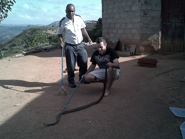 Inspector Petros Simamane of the Kloof and Highway SPCA and Nick Evans with the Black Mamba just after they got it out from the broken down car it was in