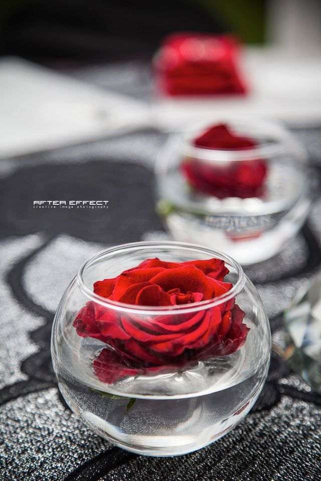 1000 Images About Rose Bowl Centerpieces On Pinterest