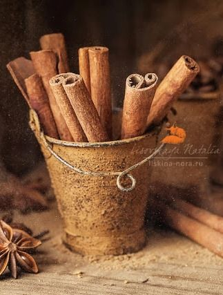 Cinnamon -- foodphotography by Natalia Lisovskaya