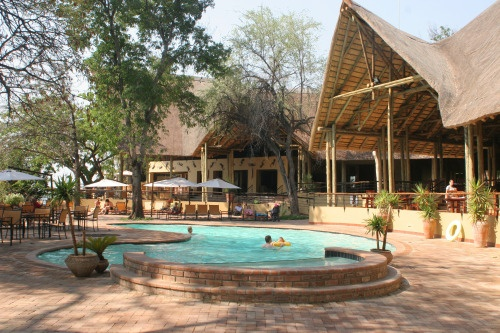 Experience the best African Safari