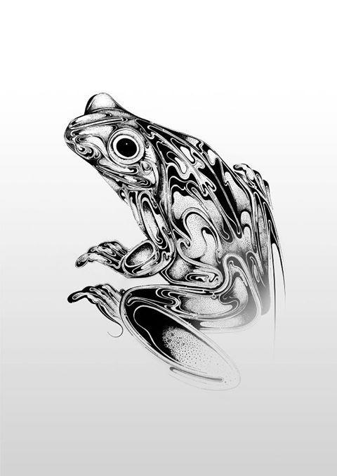 Si Scott - Frog