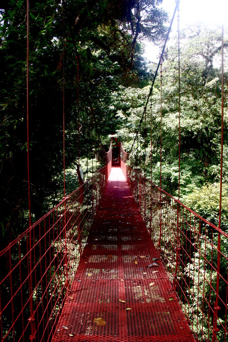 Über den Regenwäldern Costa Ricas...